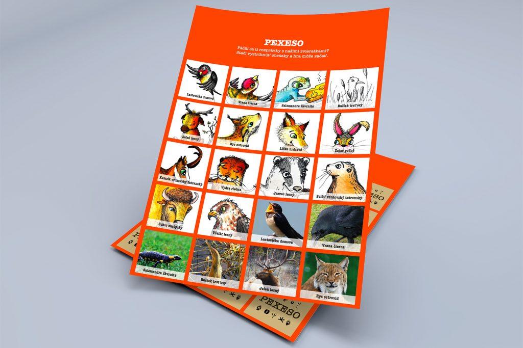 Detská kniha Ako si kamzík domov našiel